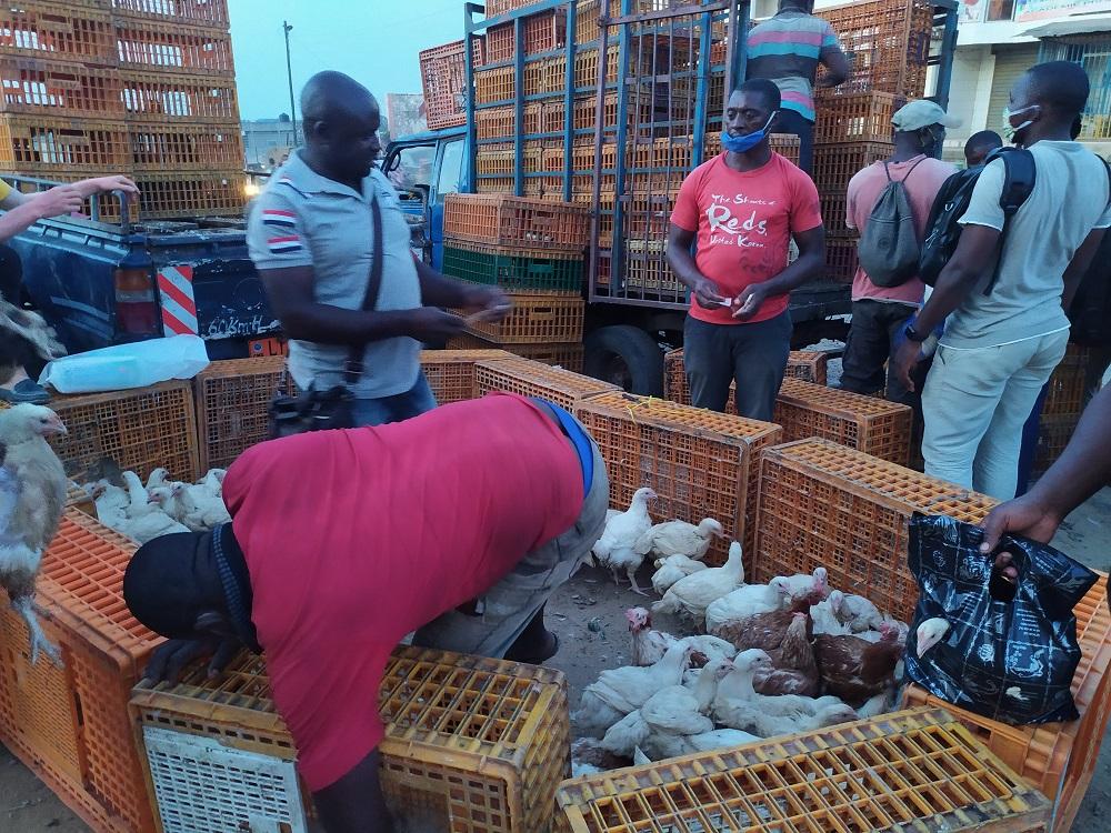 Le poulet moins cher au marché